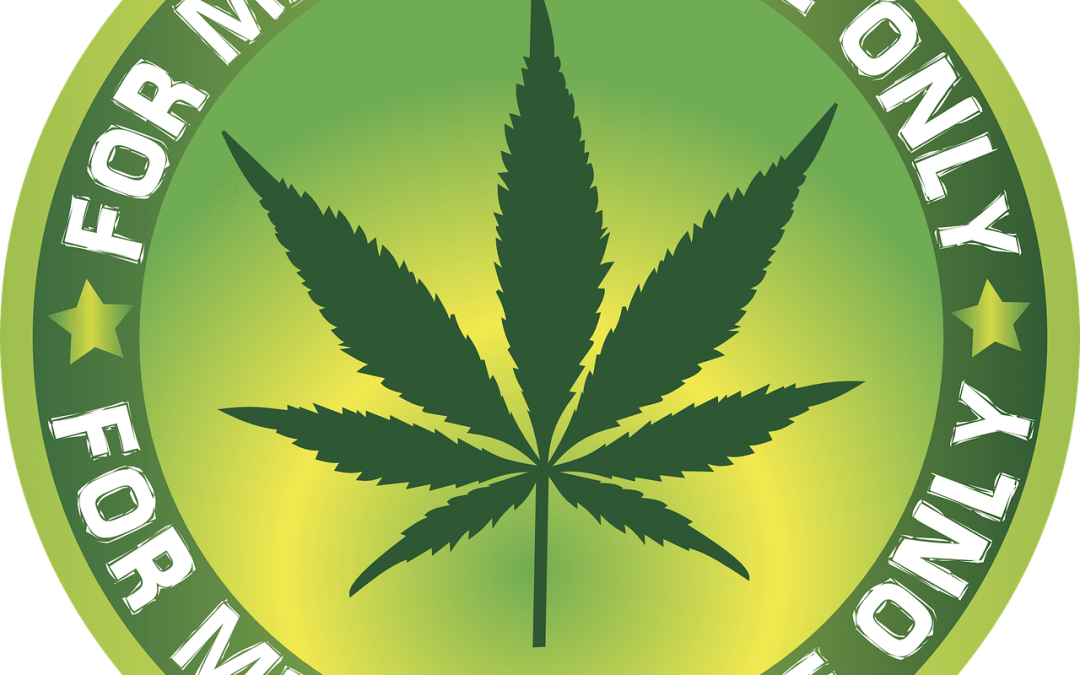 Employment Screening | Legal Marijuana: New Challenge for Employers Pt. 1